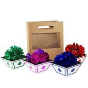 Apparizione vasi di fiori dal sacchetto